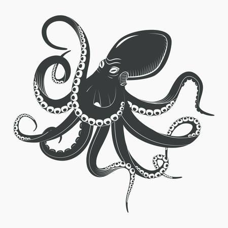 Octopus o calamar subacuático