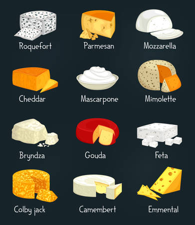 Cheese pieces of parmesan and mozzarella food Illustration