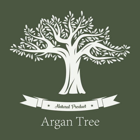 Argan tree or argania plant with branches and foliage. Organic vegetarian or vegan fruit product, cosmetic skincare production. Bottle label or grove logo, biology and healthcare theme Illustration