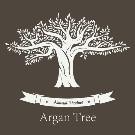foliage  natural: Fruit tree with branches and foliage, argan plant or argania flora. Natural cosmetic and oil products, vegetarian or vegan healthy food. Bottle sticker or label, grove logo and botany theme Illustration