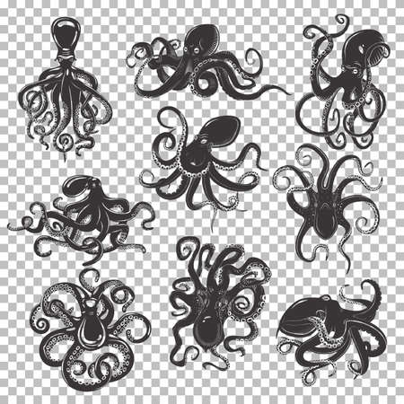 Set of isolated mascot or tattoo of octopus with swirling or wavy tentacles, ocean or sea octopoda, mollusk with suction cups, swimming monster predator, black cartoon mollusc.Underwater life, seafood Foto de archivo
