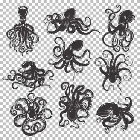 Set van geïsoleerde mascotte of tatoeage van octopus met wervelende of golvende tentakels, oceaan of zee octopoda, weekdier met zuigkoppen, zwemmend monster roofdier, zwarte cartoonmollusc.Underwater leven, zeevruchten