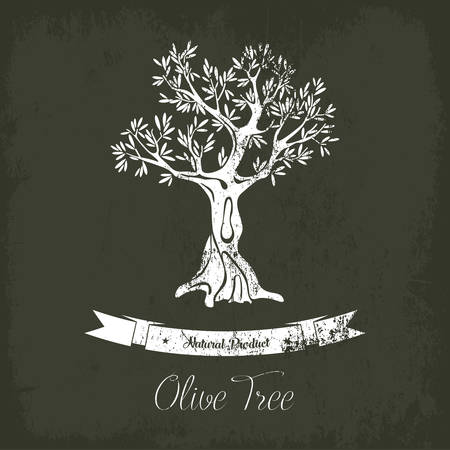 Natural olive oil tree logo for olive grove. Fruit plant with berry and branches. May be used for olive oil tree banner or olive grove logo, ancient greece tree or market badge or liquid shop emblem.