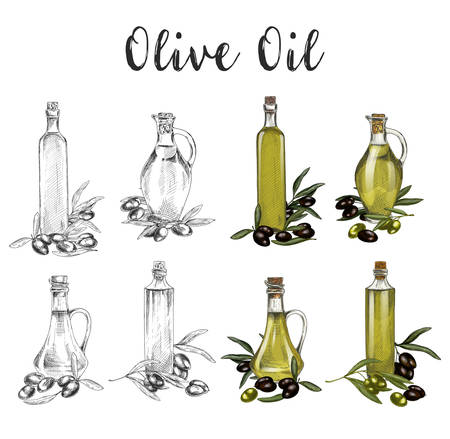 Hand drawn glassware bottles with olive oil sketches illustration.