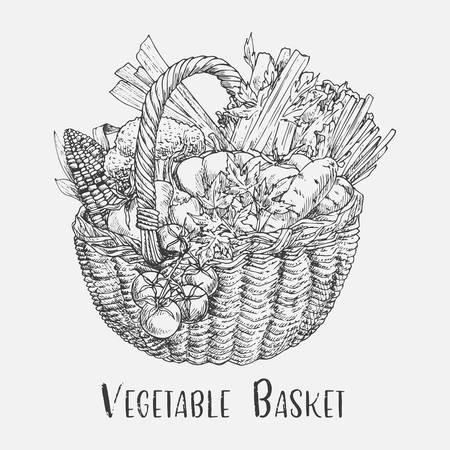 Vegetables in wicker basket or pad, ped. Sketch of tomato and corn, carrot and pumpkin, broccoli or brocco cabbage. Vegetarian nutrition and food, harvest and agriculture, edible grocery theme Çizim