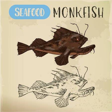 Monkfish or sea-devil, fishing-frog or fish sketch Illustration