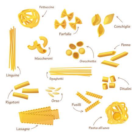 Set of isolated italian pasta. Fettuccine and farfalle, conchiglie and linguine, maccheroni and orecchiette, penne and spaghetti, rigatoni and orzo, fusilli and ditalini, lasagne. Food and nutrition Ilustrace