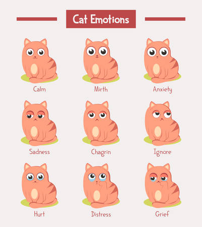 Set of isolated cats with emotions expression. Kitty face with fun or joy, mirth and happy, calm and sad, grief or chagrin, upset, ignoring and hurt, distress. Cartoon comic kitten mascots. Animal