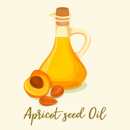 Glassware bottle with apricot oil near sliced fruit. Organic drink ingredient in jar near berry. Medicine homeopathy extract, beauty liquid and perfume essence. Agriculture and aromatherapy theme