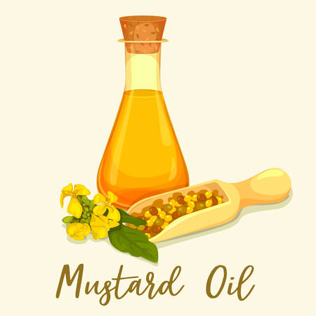 Mustard oil in glassware bottle or jar, organic seeds in scoop and leaves with flower. Natural, raw grain for cooking spice or seasoning. Medical oily cosmetic, health care. Vegetarian nutrition, food Çizim