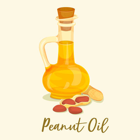 Peanut or groundnut oil in bottle. Kernel or seed near jar with fat liquid. Closeup of organic nut meal, omega 3 vitamin near grain. Vegetarian nutrition and organic gourmet, fat and cooking theme