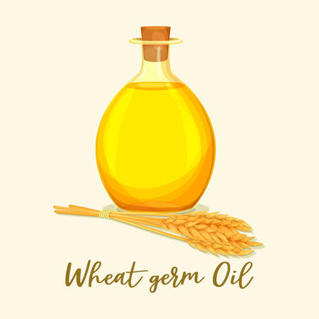 Bottle with wheat germ oil for cooking ingredient. Medical extract with vitamin E near ear or spike, spica. Cereal organic ingredient for food. Product for medicine. Agriculture essence, healthy food Vettoriali