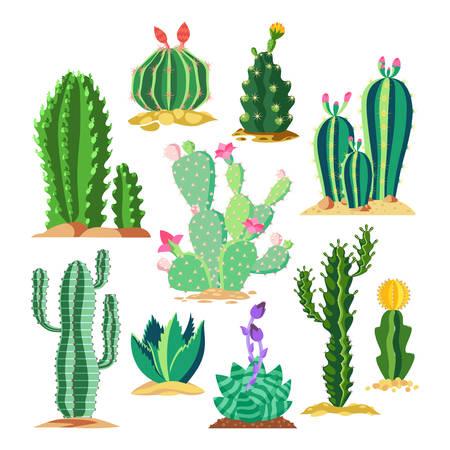 Set of wildlife cactus or succulent plant. Blossom of saguaro and cereus, golden barrel cacti and star cactaceae. Mexico and America, Arizona and San Diego prickly plant with flowers. Desert flora Ilustração