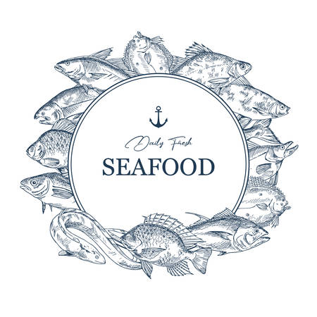 Sign with seafood sketches or banner with hand drawn fish. Insignia with underwater wildlife or badge with tilapia and fluke, roach and eel, pike, haddock. Anchor on badge for restaurant, shop, store