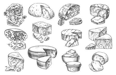 Croquis de fromage entier et sortes de tranches, icônes vectorielles isolées au crayon à la main. Produits laitiers gourmands, crème de fromage blanc, cheddar, gouda et parmesan ou camembert et maasdam avec trous Vecteurs