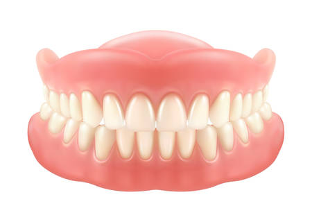 Dental jaw or dentures, false teeth with incisors. Mesh or model for dentrisity. Tooth care or oral medicine, fake smile or prosthesis with gum, implant. Stomatology, clinic, artificial tooth, health