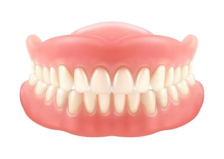Szczęka lub protezy dentystyczne, sztuczne zęby z siekaczami. Siatka lub model do uzębienia. Pielęgnacja zębów lub medycyna jamy ustnej, sztuczny uśmiech lub proteza z dziąseł, implant. Stomatologia, klinika, sztuczny ząb, zdrowie Ilustracje wektorowe