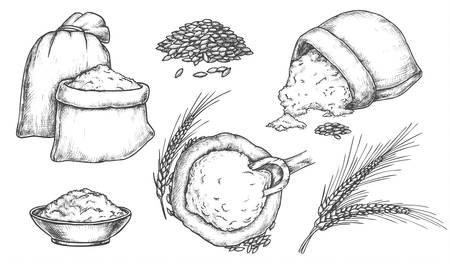 Ensemble de croquis isolés de grains de blé et d'épis, farine dans un sac. Épillet ou oreille dessinés à la main, gerbe de spica vintage, sac en toile de jute avec cuillère. Boulangerie et pain, avoine, seigle et orge, nourriture et récolte, récolte