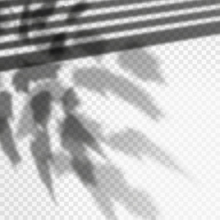 Photorealistic vector foliage shadow effect, louvers reflection