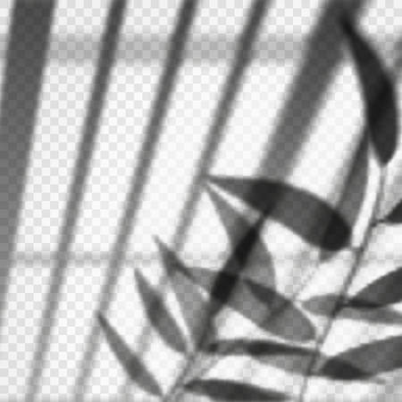 Vertical blinds or louvers reflection with branch