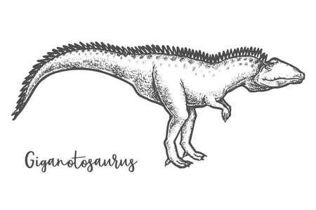 Giganotosaurus dino sketching. Sketch of dinosaur vector