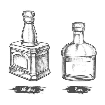 Alcohol drink bottles sketch of whiskey and rum Illustration