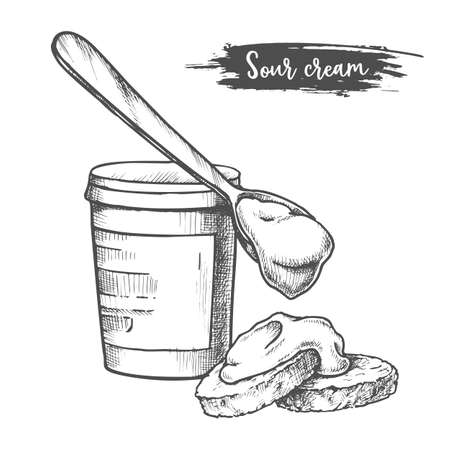Dairy products, sour cream sketch, milk food