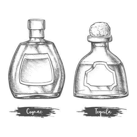 Alcohol drink bottles sketch of cognac and tequila Illustration
