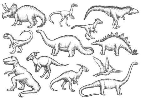 Set of isolated dinosaur sketches. Dino sketching