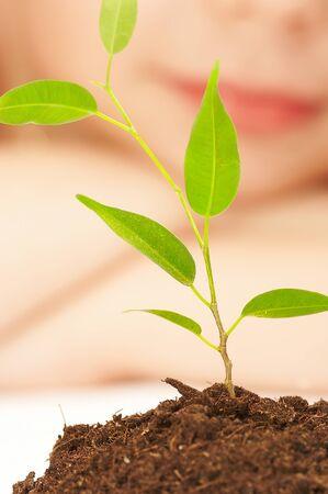 その少年は若い植物の栽培を観察します。