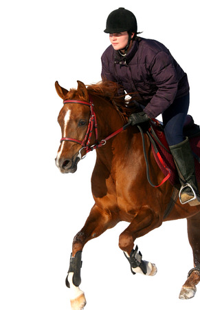 filly: The girl the equestrian skips on a horse... Stock Photo