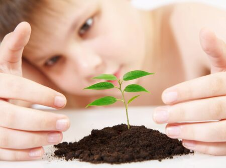 hand holding plant: The boy observes cultivation of a young plant - CONTEST