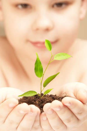 observes: The boy observes cultivation of a young plant.
