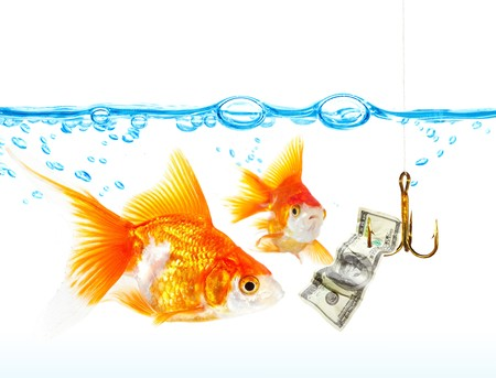 hooking: Gold small fishes under water ...