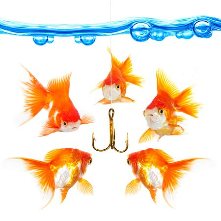 Five small fishes at a hook... Stock Photo