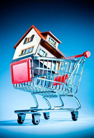 House in shopping cart on a blue background photo