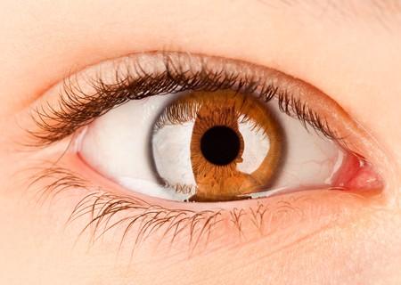 globo ocular: Ojo humano close up...  Foto de archivo