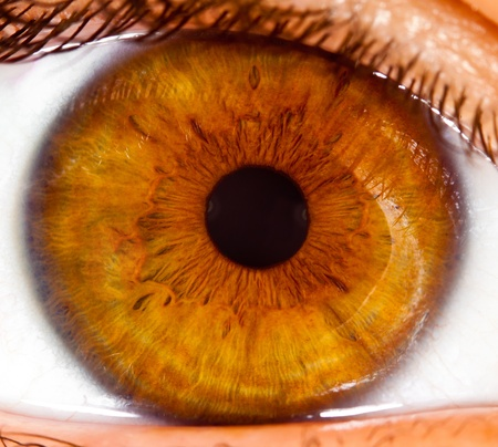 globo ocular: Ojo de la persona, un alumno fotografiada cerca hasta