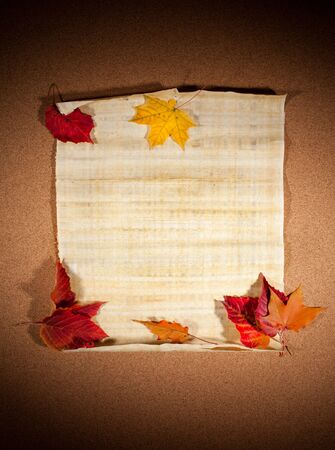 Old paper with autumn leaves, autumn note photo