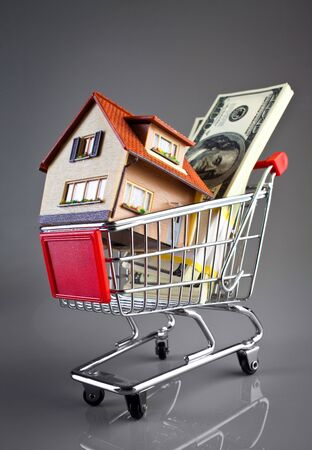 shopping cart and house on a grey background photo