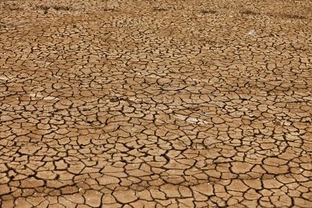 barrenness: Dry and cracked earth background ... Stock Photo