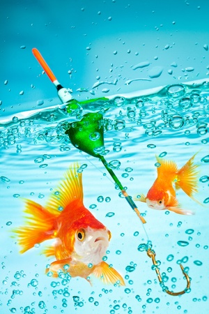 Fishing, float under water and fish photo