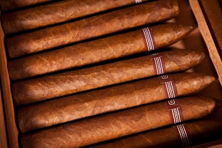 Einige Zigarren lag im Humidor