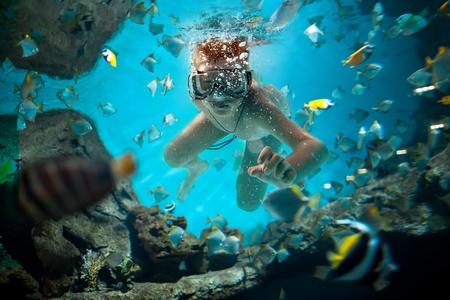 freedive langs de hersenen koraal Stockfoto