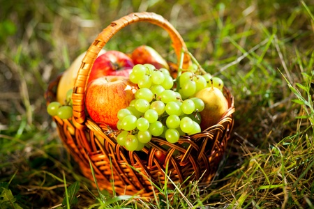 basket full of fruits on the grass Stock Photo - 12773193
