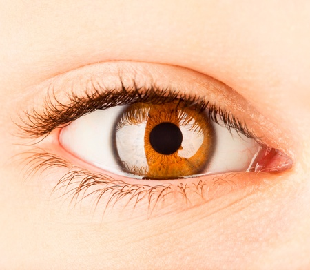 cornea: Eye of the person, a pupil photographed close up Stock Photo