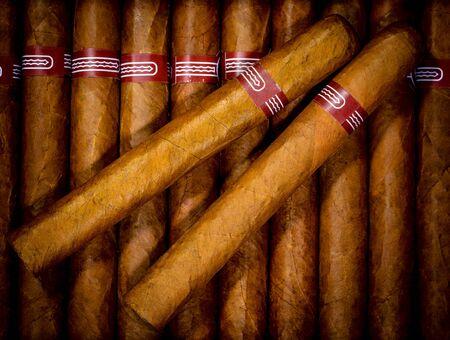 cigar smoke: Close up of cigars in open humidor box