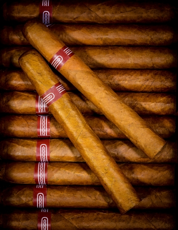 cigar: Close up of cigars in open humidor box