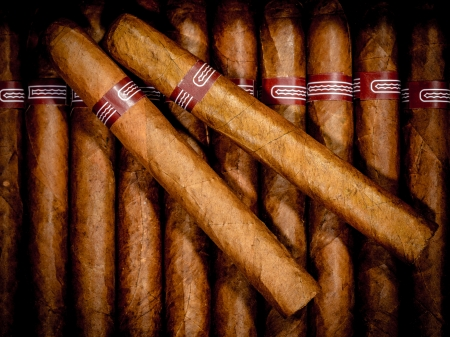nicotine: Close up of cigars in open humidor box