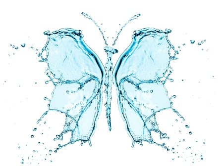 Butterfly splashing water isolated on a white background photo